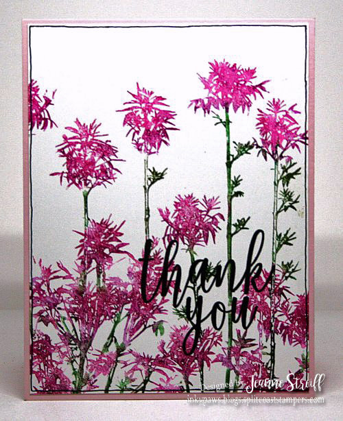SO Thank You Pink Flowers Jeanne_Streiff